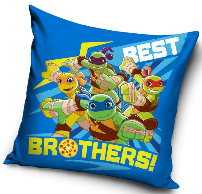 Teenage Ninja Turtles Cushion